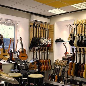 Музыкальные магазины Петродворца
