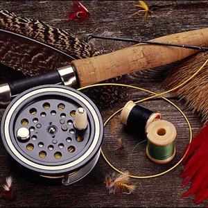Охотничьи и рыболовные магазины Петродворца