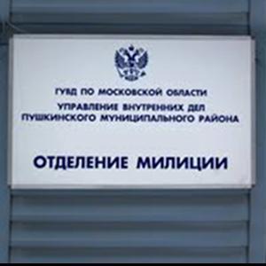Отделения полиции Петродворца